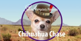 Chihuahua Chase Video Cover Image