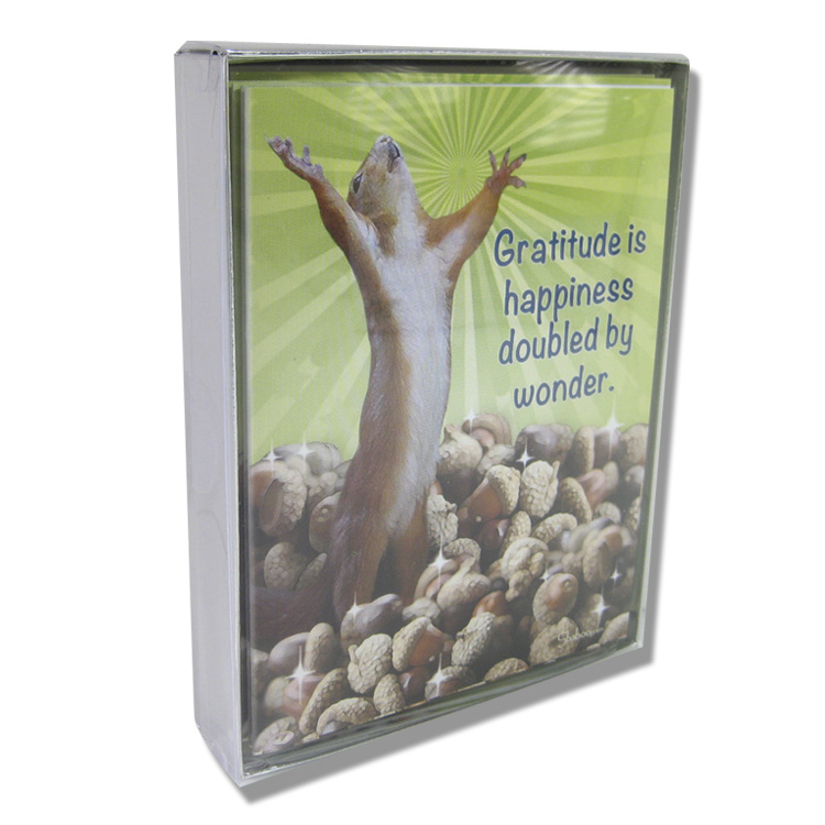 Box of Squirrel cards